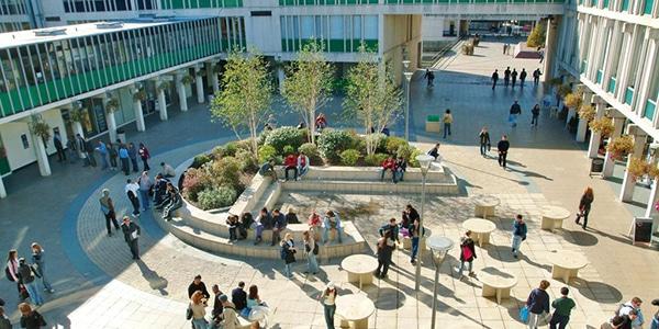 university of essex colchester campus